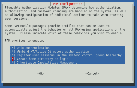 pam-auth-update screenshot